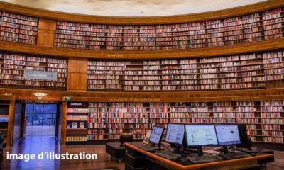 gunnar-ridderstrom-unsplash_braives_bibliotheque_virtuelle