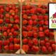 hannut_vanova_fraises